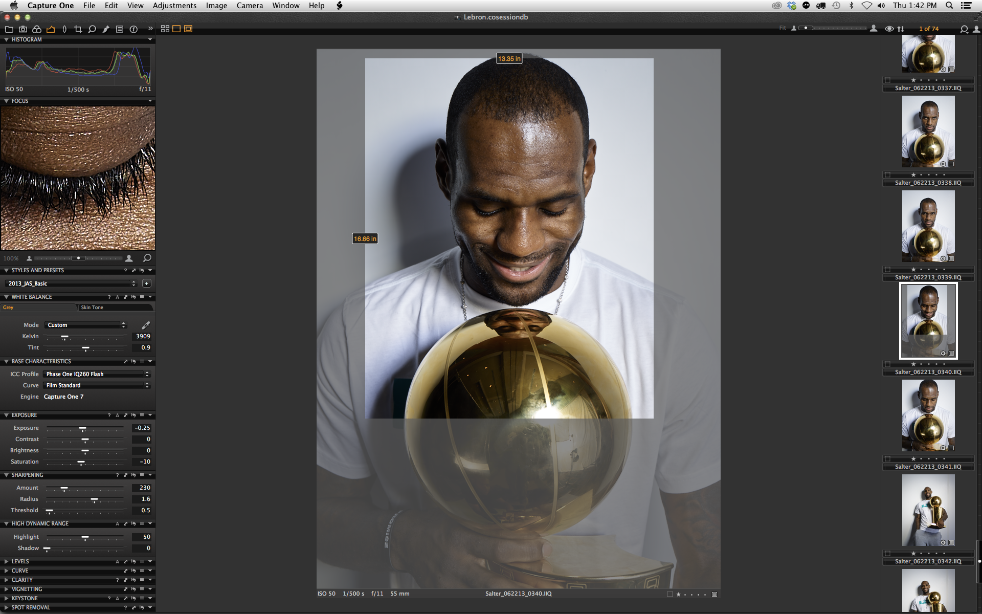 Phase One IQ260 | LeBron James